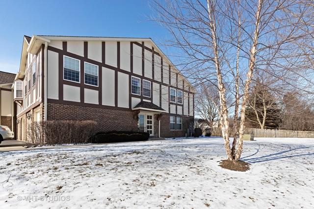 138 W Golf Road D, Libertyville, IL 60048 (MLS #10275823) :: Helen Oliveri Real Estate