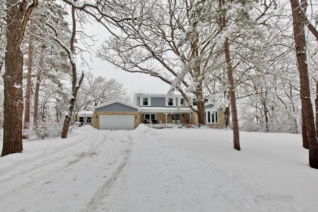 27642 W Henry Lane, Lake Barrington, IL 60010 (MLS #10275971) :: The Mattz Mega Group