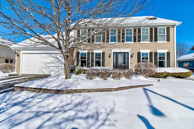 1720 Haverford Drive, Algonquin, IL 60102 (MLS #10276158) :: Baz Realty Network | Keller Williams Preferred Realty