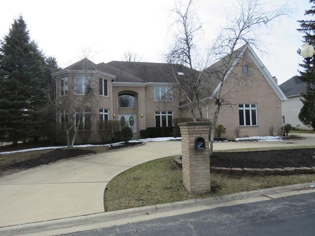 6 Gianna Drive, Flossmoor, IL 60422 (MLS #10276389) :: The Mattz Mega Group