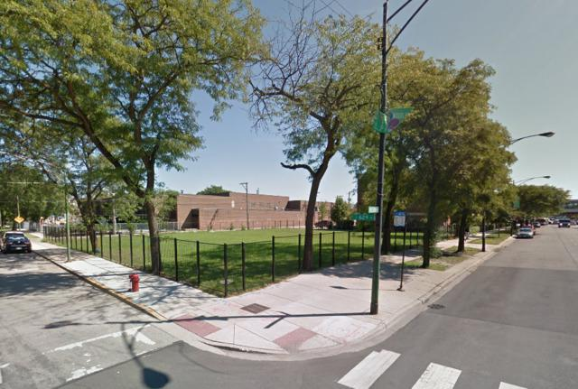 6251 S Cottage Grove Avenue, Chicago, IL 60637 (MLS #10276431) :: The Mattz Mega Group
