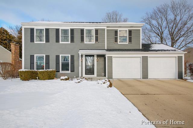 1619 Leabrook Lane, Wheaton, IL 60189 (MLS #10276475) :: The Dena Furlow Team - Keller Williams Realty
