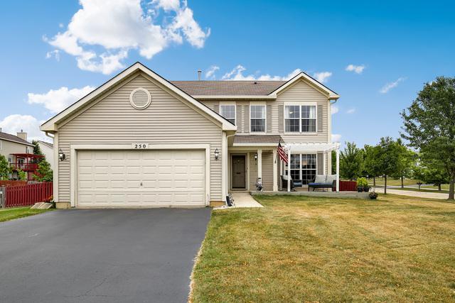250 Clarendon Lane, Bolingbrook, IL 60440 (MLS #10276509) :: Baz Realty Network | Keller Williams Preferred Realty
