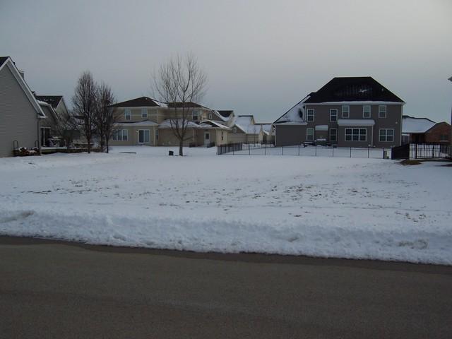 1445 Lance Avenue, Elburn, IL 60119 (MLS #10276722) :: The Mattz Mega Group