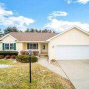 913 Thomas Drive, Momence, IL 60954 (MLS #10276756) :: Domain Realty