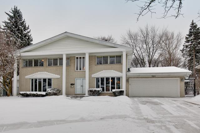 720 S Hiawatha Court, Mount Prospect, IL 60056 (MLS #10276858) :: Baz Realty Network | Keller Williams Preferred Realty