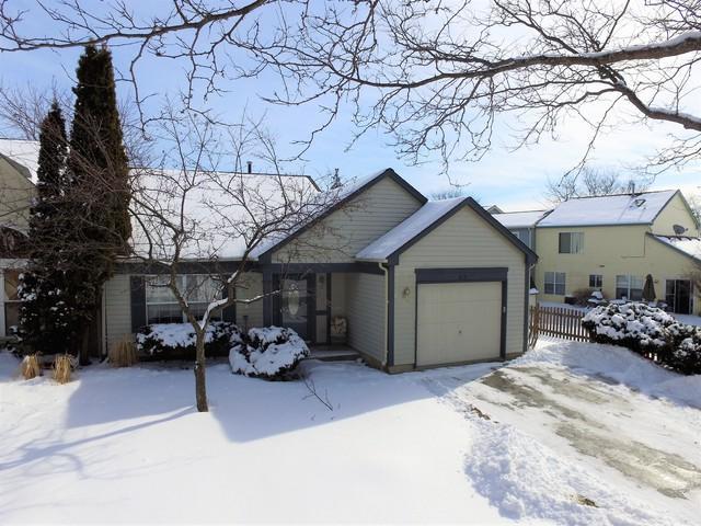 813 Buckingham Court, Mundelein, IL 60060 (MLS #10276879) :: Helen Oliveri Real Estate