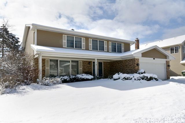 769 W Kimball Avenue, Palatine, IL 60067 (MLS #10276932) :: Helen Oliveri Real Estate