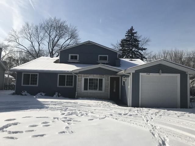 702 S Warren Avenue, Palatine, IL 60074 (MLS #10276939) :: Helen Oliveri Real Estate