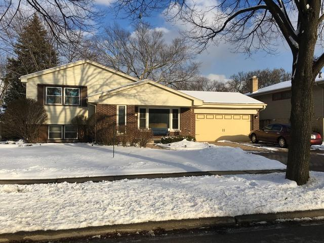 779 S Mitchell Avenue, Elmhurst, IL 60126 (MLS #10276987) :: Baz Realty Network | Keller Williams Preferred Realty