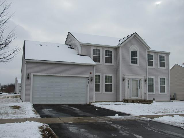 6613 Pasture Side Trail, Matteson, IL 60443 (MLS #10277062) :: The Mattz Mega Group