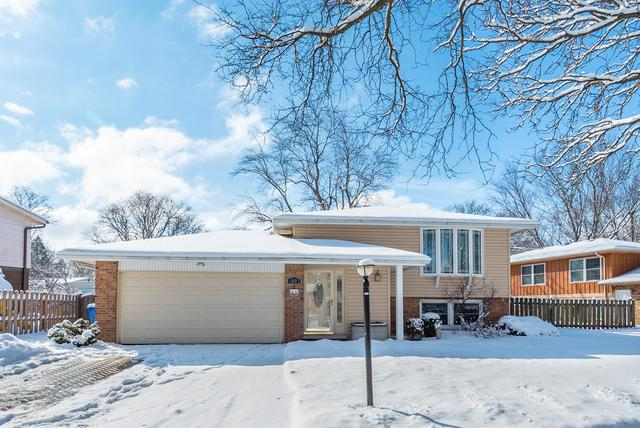 2003 E Cayuga Lane, Mount Prospect, IL 60056 (MLS #10277209) :: Helen Oliveri Real Estate