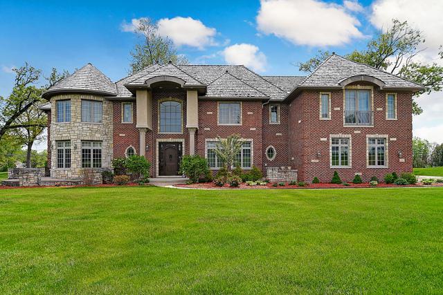 9101 S Garfield Avenue, Burr Ridge, IL 60527 (MLS #10277347) :: Baz Realty Network | Keller Williams Preferred Realty