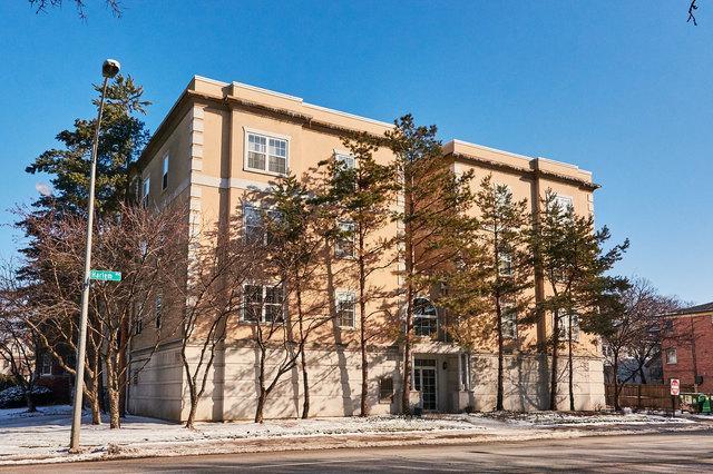 1135 Schneider Avenue 2A, Oak Park, IL 60302 (MLS #10277353) :: Baz Realty Network | Keller Williams Preferred Realty