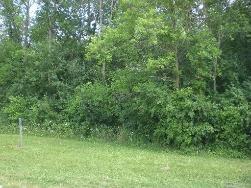 Lot 23 Inverway Drive, Lakewood, IL 60014 (MLS #10277679) :: The Mattz Mega Group