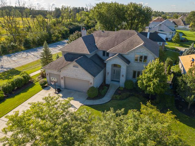 10401 Great Egret Drive, Orland Park, IL 60467 (MLS #10277736) :: Baz Realty Network   Keller Williams Preferred Realty