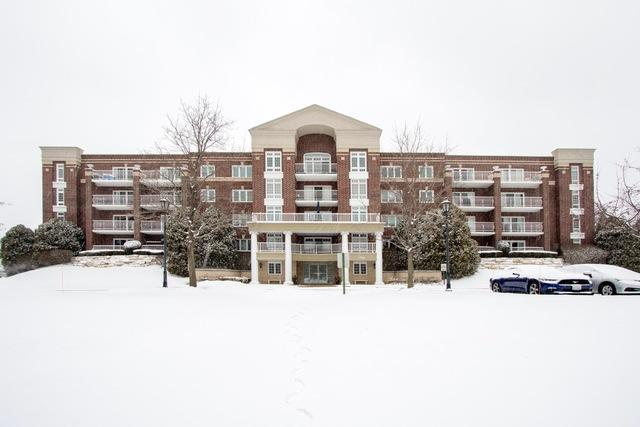 7021 W Touhy Avenue W #408, Niles, IL 60714 (MLS #10277959) :: Baz Realty Network | Keller Williams Preferred Realty