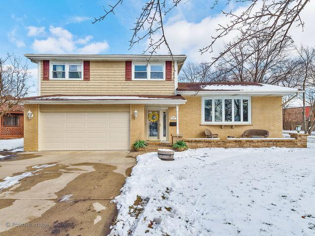 1040 62nd Place, Downers Grove, IL 60516 (MLS #10278164) :: The Dena Furlow Team - Keller Williams Realty