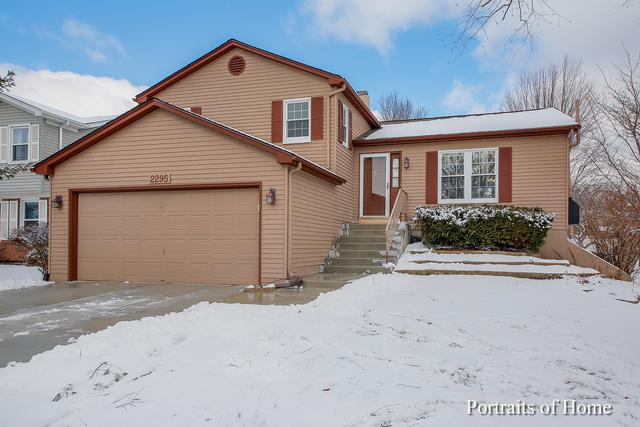 2295 Briarhill Drive, Naperville, IL 60565 (MLS #10278731) :: The Dena Furlow Team - Keller Williams Realty