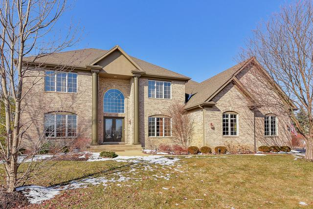 24410 Woodhall Court, Naperville, IL 60564 (MLS #10279126) :: The Dena Furlow Team - Keller Williams Realty