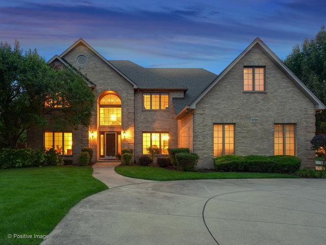 6700 Dicosola Court, Darien, IL 60561 (MLS #10279200) :: Helen Oliveri Real Estate