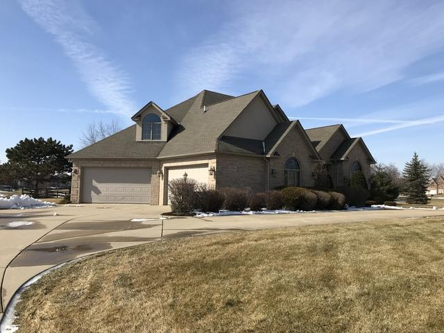 10956 Royal Porthcawl Drive, Naperville, IL 60564 (MLS #10279269) :: Littlefield Group