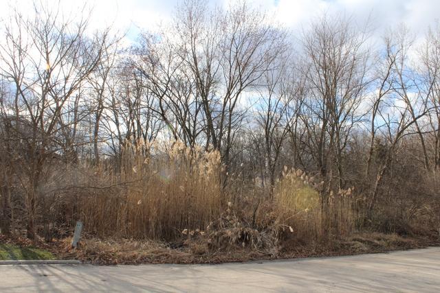 2 Old Tamarack Lane, Orland Park, IL 60462 (MLS #10279990) :: The Mattz Mega Group