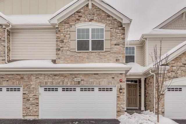 532 Ursuline Avenue, Naperville, IL 60565 (MLS #10280288) :: Berkshire Hathaway HomeServices Snyder Real Estate