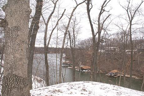 Lot 271 Elm Tree Drive, Varna, IL 61375 (MLS #10280405) :: Berkshire Hathaway HomeServices Snyder Real Estate