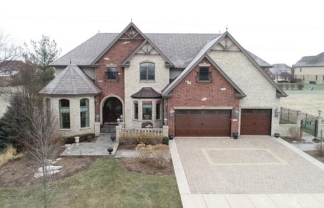 22957 Devonshire Lane, Frankfort, IL 60423 (MLS #10280441) :: The Mattz Mega Group