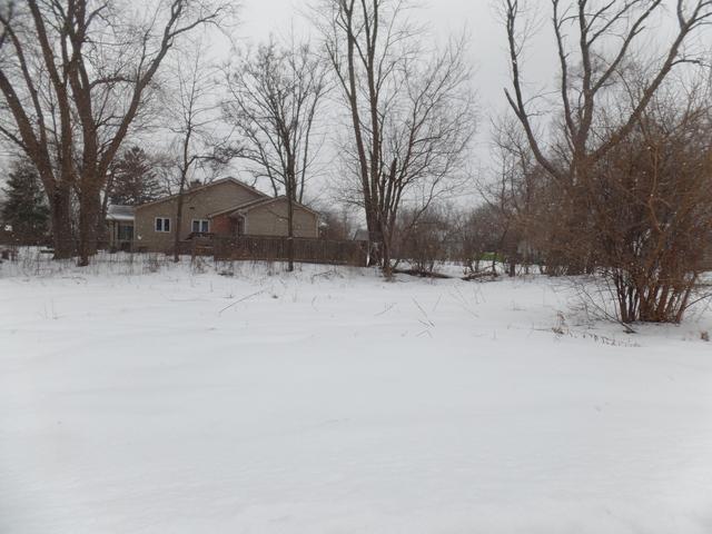 20759 W Verona Avenue, Lake Villa, IL 60046 (MLS #10280943) :: Century 21 Affiliated