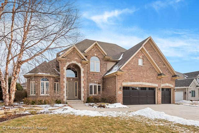 540 Eagle Brook Lane, Naperville, IL 60565 (MLS #10281158) :: The Dena Furlow Team - Keller Williams Realty