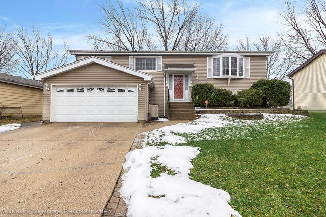 551 Cottonwood Circle, Bolingbrook, IL 60440 (MLS #10281185) :: Helen Oliveri Real Estate