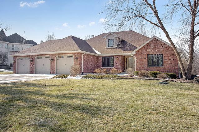 13808 S Janas Parkway, Homer Glen, IL 60491 (MLS #10281722) :: Baz Realty Network | Keller Williams Preferred Realty