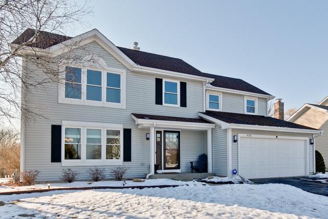 428 Sutcliffe Circle, Vernon Hills, IL 60061 (MLS #10281788) :: Baz Realty Network | Keller Williams Preferred Realty