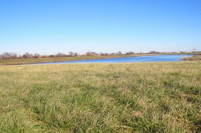Lot 3 00 1900 Road E, Fairbury, IL 61739 (MLS #10289674) :: Littlefield Group