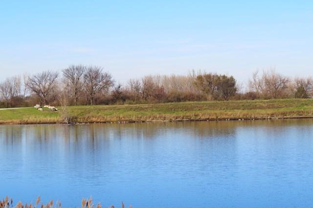 Lot A 00 1900 Road E, Fairbury, IL 61739 (MLS #10289676) :: Janet Jurich Realty Group