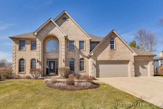 527 Arbor Lane, Oswego, IL 60543 (MLS #10290622) :: Baz Realty Network   Keller Williams Preferred Realty