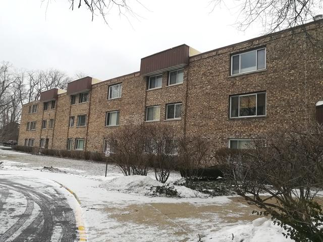 2600 Brookwood Way Drive 101A, Rolling Meadows, IL 60008 (MLS #10291005) :: Janet Jurich Realty Group