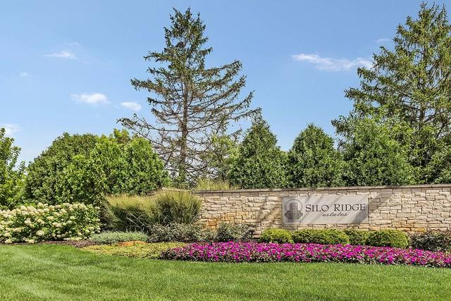 Lot # 65 S Silo Ridge Road, Orland Park, IL 60467 (MLS #10291209) :: Baz Realty Network | Keller Williams Preferred Realty