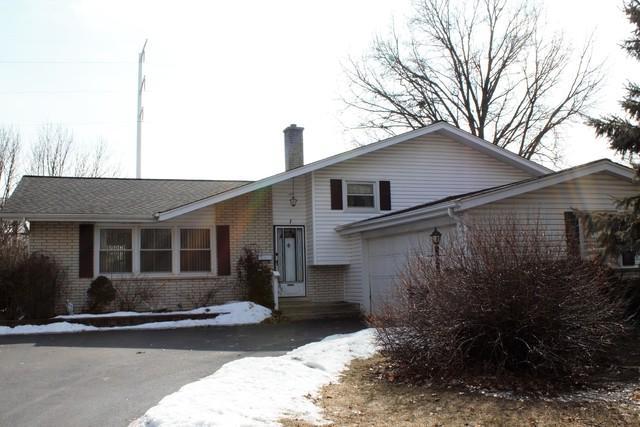 214 Tupelo Avenue, Naperville, IL 60540 (MLS #10291979) :: Baz Realty Network | Keller Williams Preferred Realty