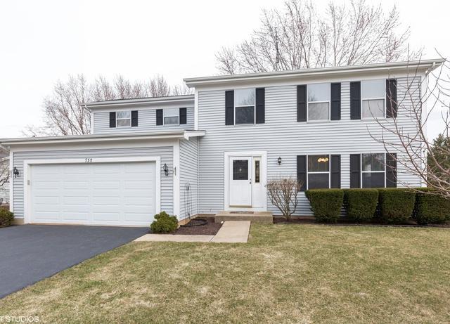 730 Timberwood Lane, Algonquin, IL 60102 (MLS #10292177) :: Helen Oliveri Real Estate