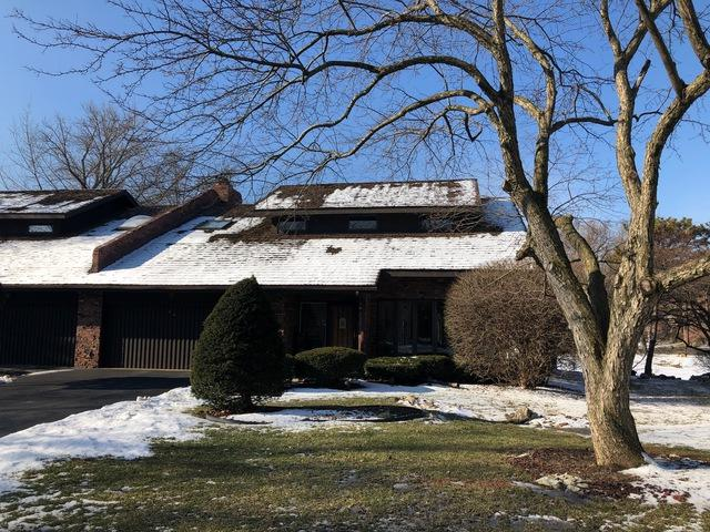 46 Lucas Drive, Palos Hills, IL 60465 (MLS #10292357) :: The Wexler Group at Keller Williams Preferred Realty