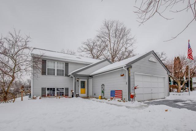 743 Dartmouth Drive, Island Lake, IL 60042 (MLS #10292493) :: HomesForSale123.com