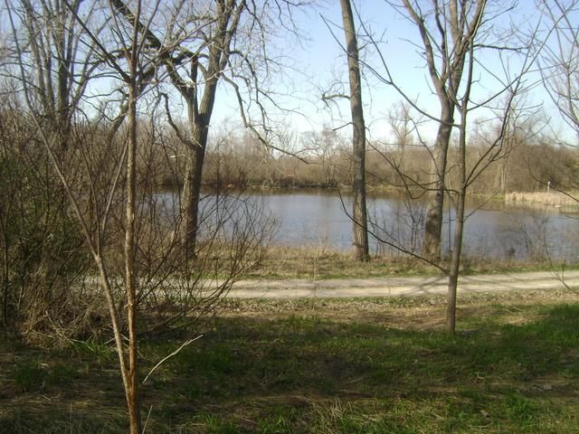 25547 S Pinewood Lane, Monee, IL 60449 (MLS #10292851) :: Century 21 Affiliated