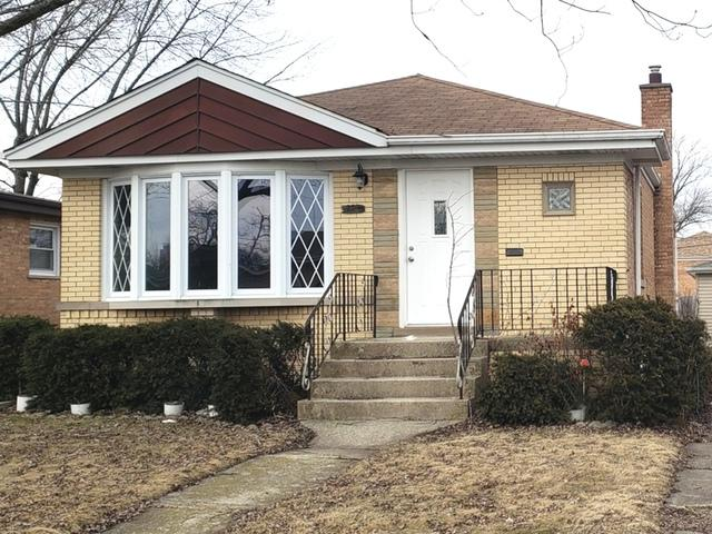 229 Maple Avenue, South Chicago Heights, IL 60411 (MLS #10293317) :: Domain Realty