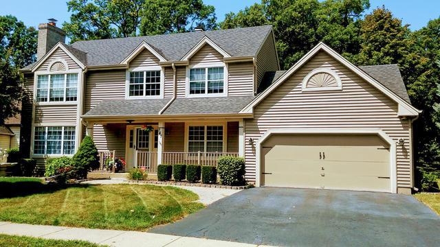 747 Red Oak Drive, Bartlett, IL 60103 (MLS #10293659) :: Baz Realty Network   Keller Williams Preferred Realty