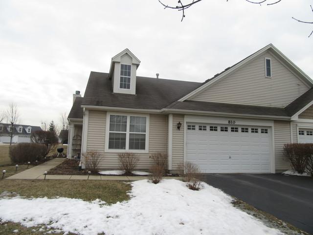 810 Bellevue Circle, Oswego, IL 60543 (MLS #10294923) :: Baz Realty Network | Keller Williams Preferred Realty