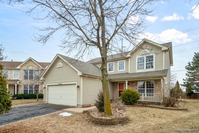1224 Samuel Court, Naperville, IL 60540 (MLS #10295289) :: Helen Oliveri Real Estate