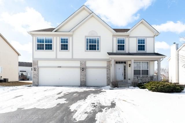 1530 S Elizabeth Lane, Round Lake, IL 60073 (MLS #10295724) :: Baz Realty Network | Keller Williams Preferred Realty